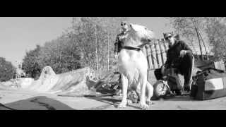 Maciek & Klatsche - Wieder Da ft. Aci Krank (Official HD Video)