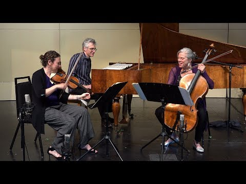 Schubert: Trio Op. 100 - Andante con moto. Freivogel, Tomkins & Zivian 4K UHD