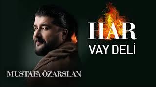 Vay Deli - Mustafa Özarslan Resimi