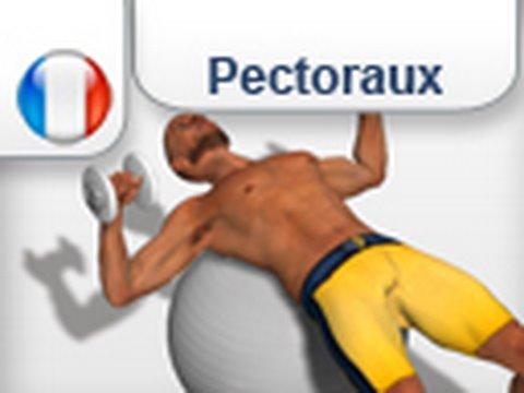 Developpe couche avec ballon suisse les pectoraux youtube - Pectoraux developpe couche ...