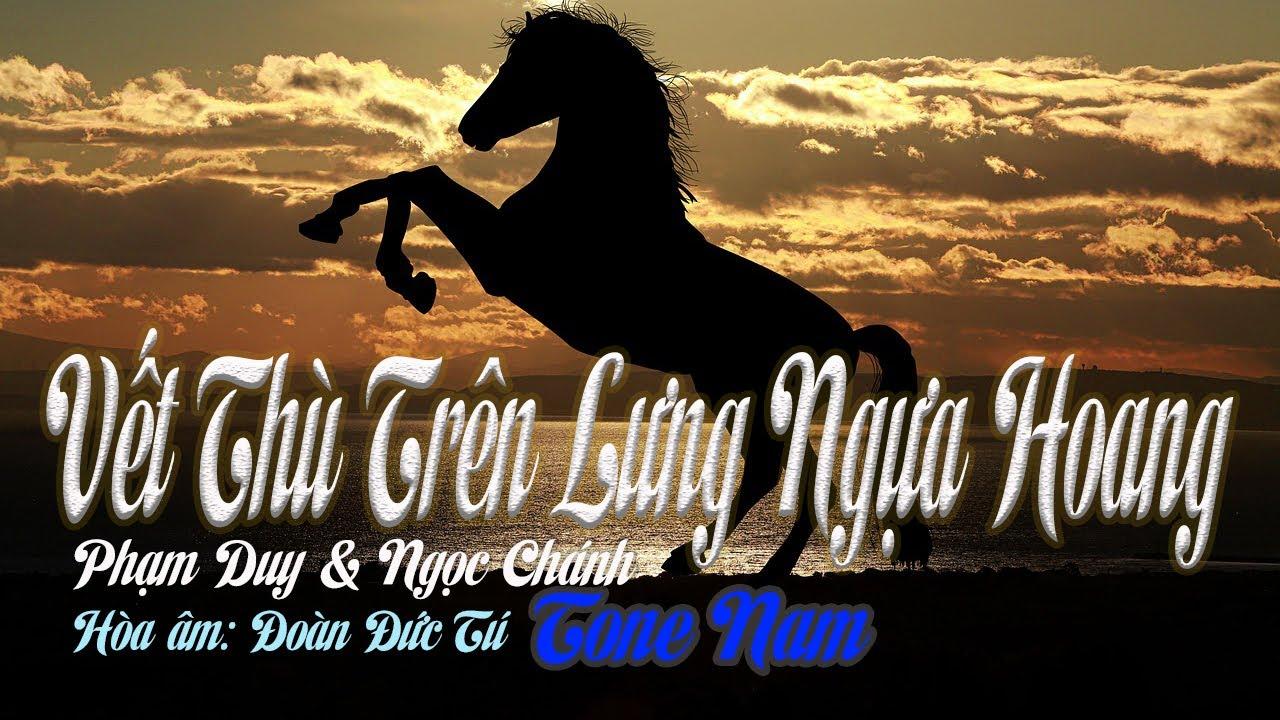 Download karaoke Vết Thù Trên Lưng Ngựa Hoang |tone Nam|