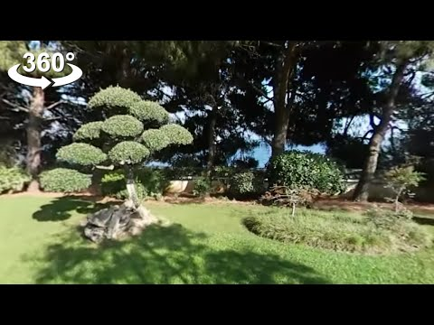 Incredible Japanese garden in Monaco, 360 video