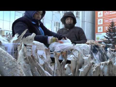 Fish shopping at Irkutsk open air market