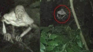 5 Misteriosas Criaturas Captadas en Cámara y Vistas en el Mundo Real