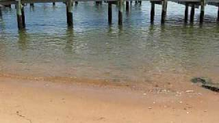 Bay Point - East Beach Homes for Sale Norfolk, VA Thumbnail
