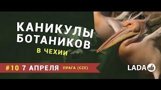 Лада Калина видео из Праги (Каникулы ботаников в Чехии #10)(Грандиозный столичный зоопарк, улии для рабочих и просто невероятно красивая архитектура Праги. В этом..., 2015-04-28T15:14:33.000Z)
