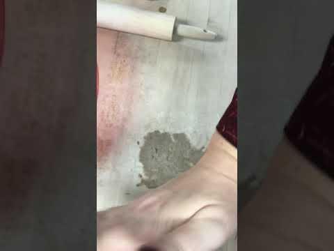 Demo on Clean Up Procedure