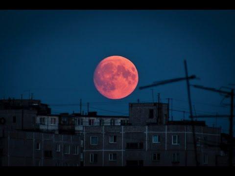 Кровавая Луна Скачать Через Торрент img-1