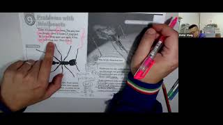 Publication Date: 2021-06-24 | Video Title: Problems with Minibeasts