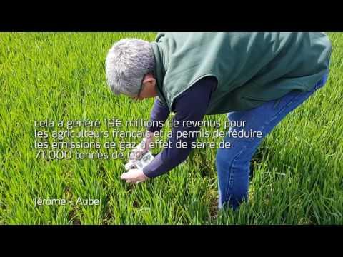 Yara N-Tester®  Outil d'agriculture de précision