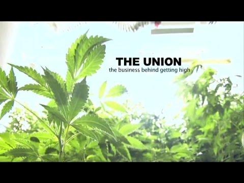 The Union Business Behind Getting High מתורגם