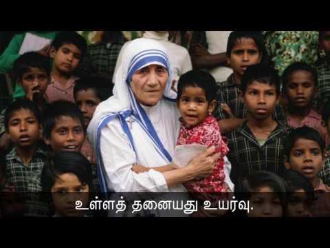 தமிழ்மறையோன் வள்ளுவர் பிறந்தநாள் - சீமான் புகழ்வணக்கம்