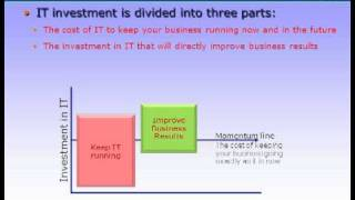 Information Technology Investment aligned to three roles