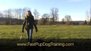 Teaching The Blind Retrieve