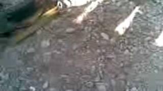 Перестрелка в Цхинвале