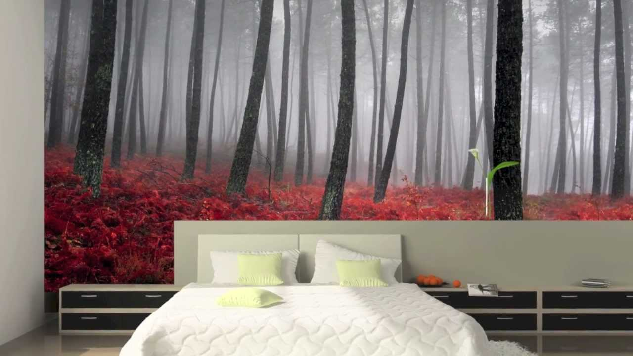 Wall murals wallpaper murals custom murals muraldecal com hd youtube