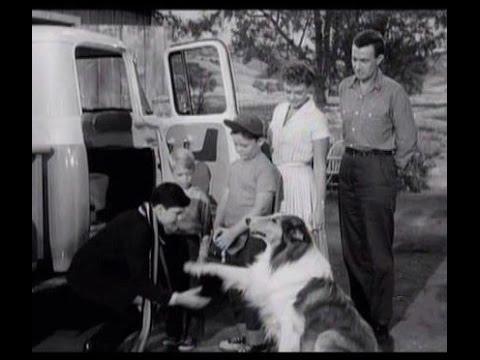 "Lassie - ""The Bundle from Britain"" - Episode #156 - Season 5, Ep. 13 - 11/30/58"