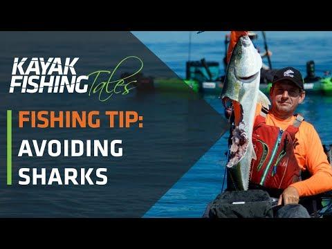 Kayak Fishing Tip | How to Avoid Sharks While Kayak Fishing