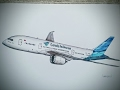 Download Boeing 787-800 GARUDA INDONESIA drawing timelapse