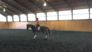 Echo Lesson with ASD