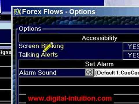 forex-trading-|-forex-training