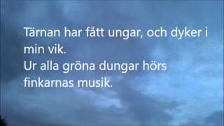Sjösala vals, vers 1 och 2, musikbakgrund med text.