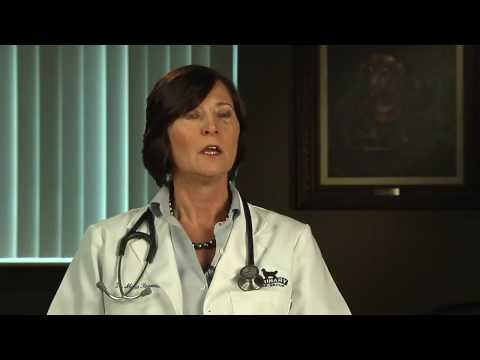 Mast Cell Tumor Treatments for Dogs - VetVid Episode 019