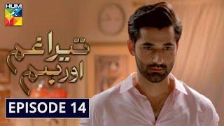 Tera Ghum Aur Hum Episode 14 HUM TV Drama 13 August 2020