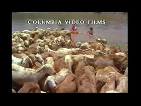 Uthiri Pookal Full Movie 43