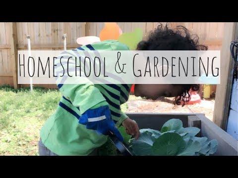 Homeschooling & Gardening
