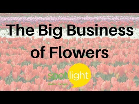 """""""The Big Business of Flowers"""" - practice English with Spotlight"""