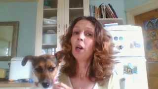 Tory Mum on Fox Hunting