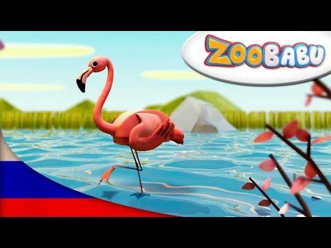 Розовый фламинго мультфильм смотреть онлайн