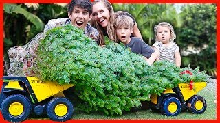 DUMP TRUCK CHRISTMAS TREE DELIVERY