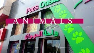 جولة في محل واحة الحيوان  | VLOG 1 #