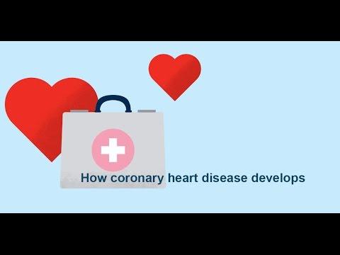How coronary heart disease (atherosclerosis) develops