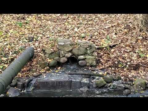 Древняя гидротехническая система. Переезд в Калининград