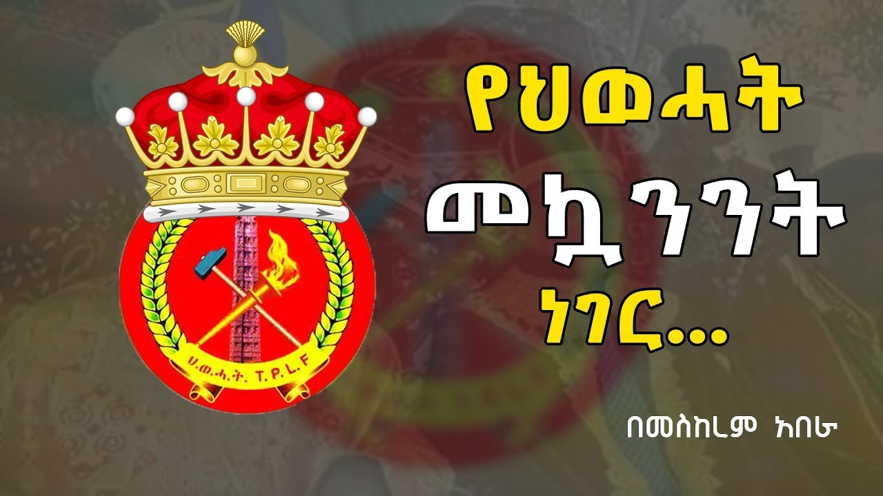 What is new about TPLF