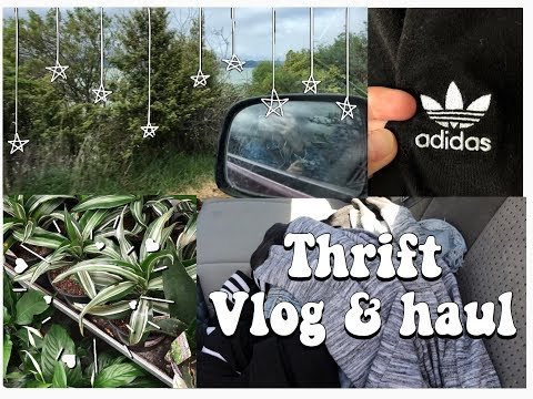 Thrift With Me! Vlog & Haul | New Zealand