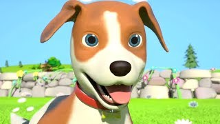 Bingo Dog Song & More Popular Nursery Rhymes for Kids by Little Treehouse