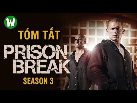 Tóm tắt Prison Break (Vượt ngục) | Season 3