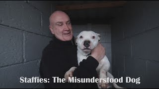 Staffies: The Misunderstood Dog  Documentary