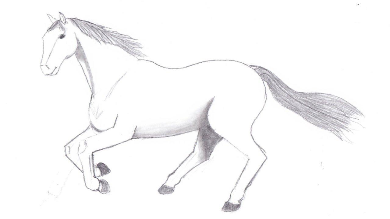 How to draw a horse hur man ritar en hst youtube how to draw a horse hur man ritar en hst ccuart Gallery