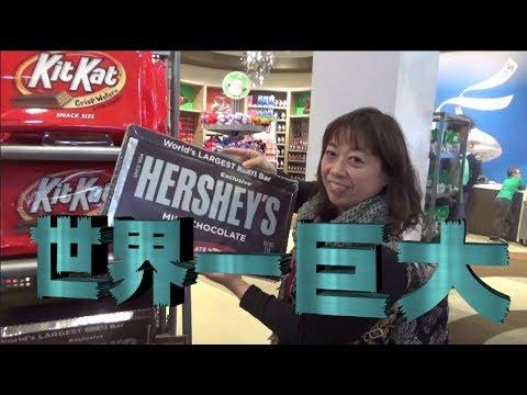 求人ボックス チョコレート 工場の仕事・求人 - 千 …