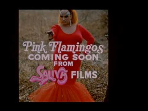画像: Pink Flamingos Trailer youtu.be
