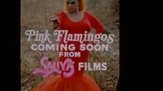 Pink Flamingos Trailer