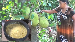 Village Foods - Cooking Jackfruit Curry in my Village by my Mom