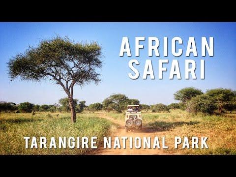 African Safari - Tarangire National Park, Tanzania