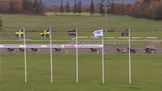 Vidéo de la course PMU PRIX LOPP 1