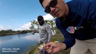 MAGNET FISHING Alligator Eats Bass